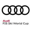 csm_FIA_AUDI_logo_WC_nov_2017_a114403056.jpg